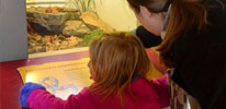 Adult and Me Classes at the Zoo